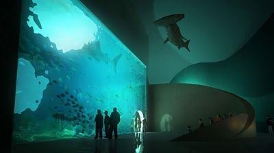 Проект аквариума в Батуми 6