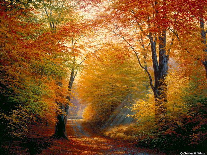 Картинки пейзажи золотая осень