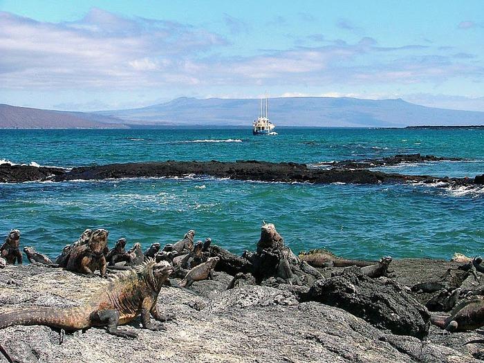 Галапагосские острова 44463