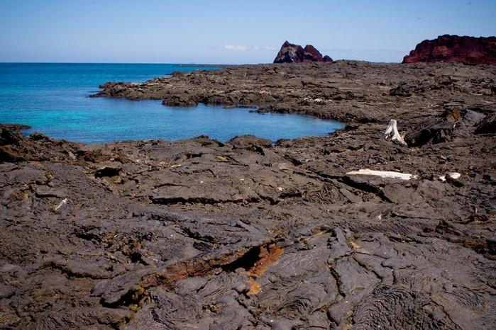 Галапагосские острова 65329