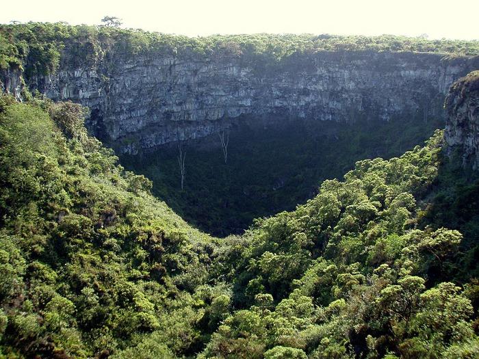 Галапагосские острова 66196