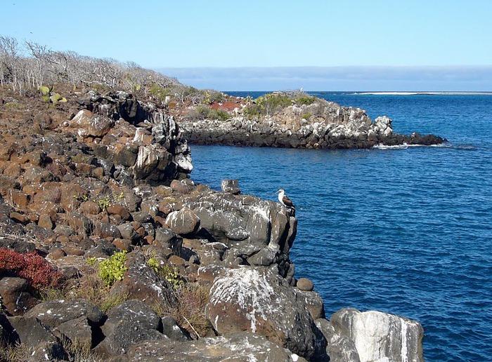 Галапагосские острова 79020