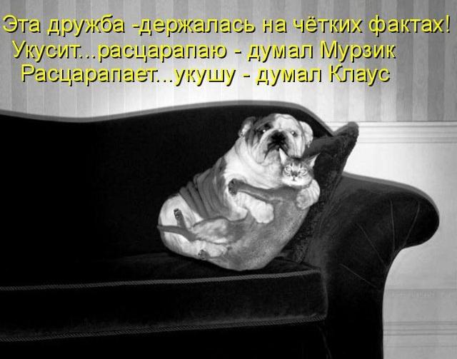 http://img1.liveinternet.ru/images/attach/c/2//66/255/66255115_009.jpg