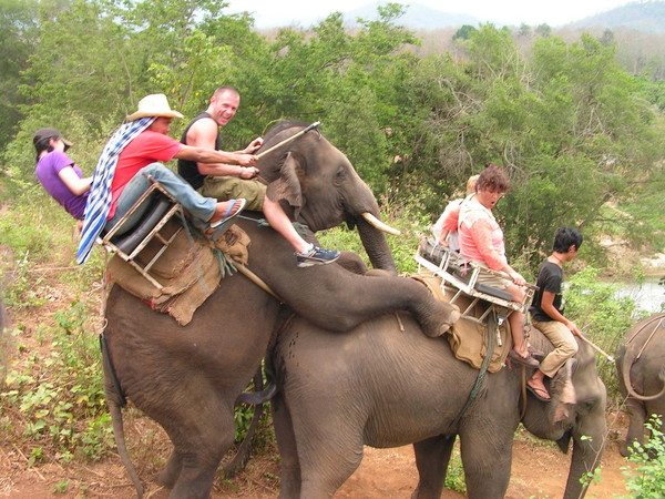 два ебущихся слона - это как неприятности в понедельник