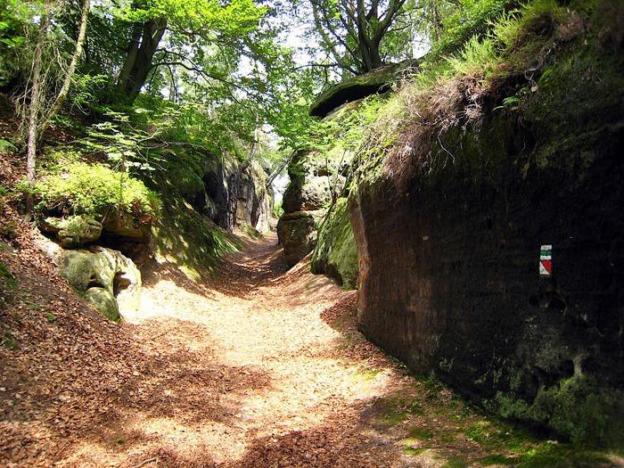 Кокоржин - cредневековый чешский замок 48576