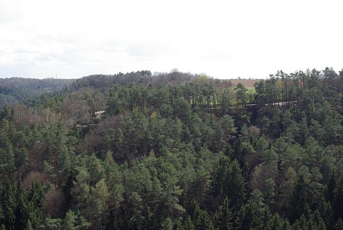 Кокоржин - cредневековый чешский замок 87366