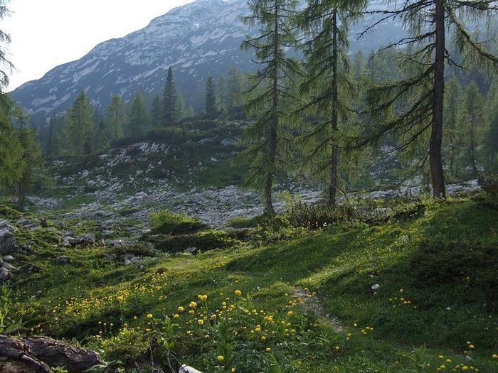 Tote Gebirge -