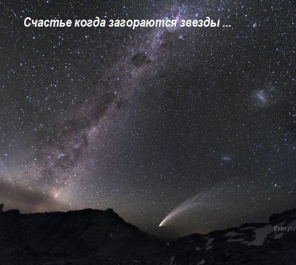 (600x537, 59Kb)