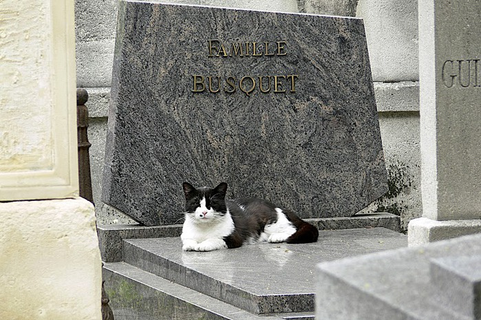 10 интереснейших кладбищ Европы 62148