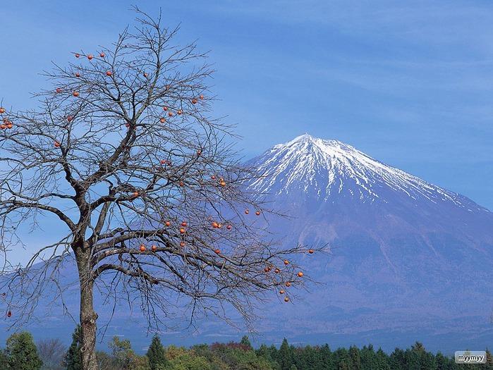 Величественный символ Японии - гора Фудзи 26