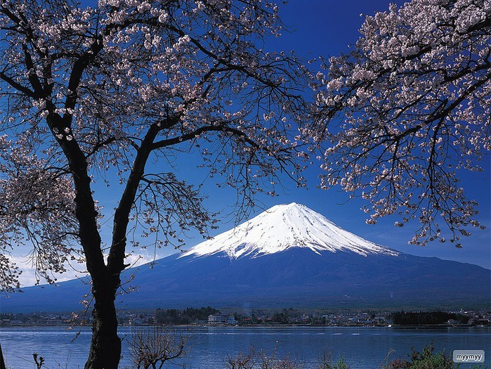 Величественный символ Японии - гора Фудзи 59