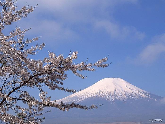 Величественный символ Японии - гора Фудзи 9