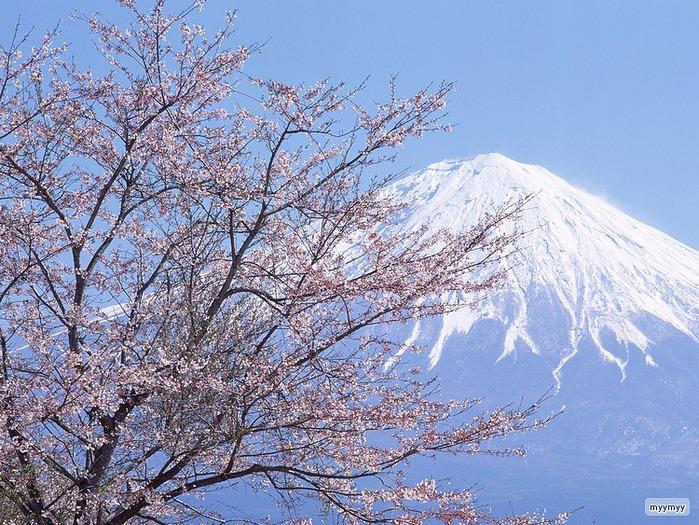 Величественный символ Японии - гора Фудзи 51