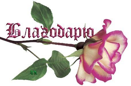 46491165_44520767_43183310_blagodaryu__s_rozoy (456x300, 37 Kb)