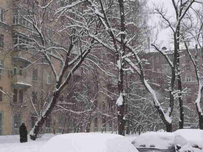 Зима. Москва, 2010 - снимок прошой зимой