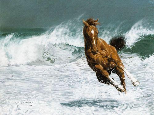 бегущая лошадь | Записи с