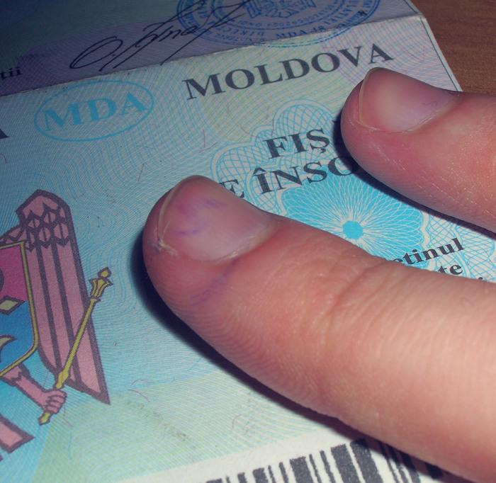 выборы молдова 2010 выборы 28 ноября