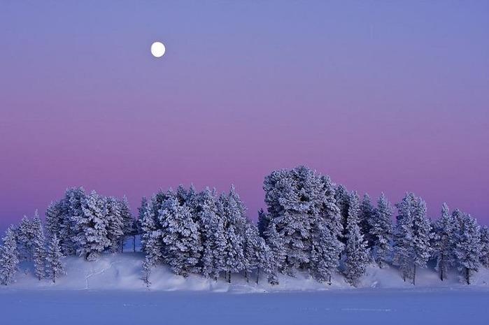 Вот и наступила зима 10
