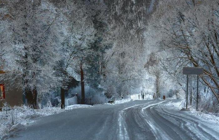 Вот и наступила зима 15