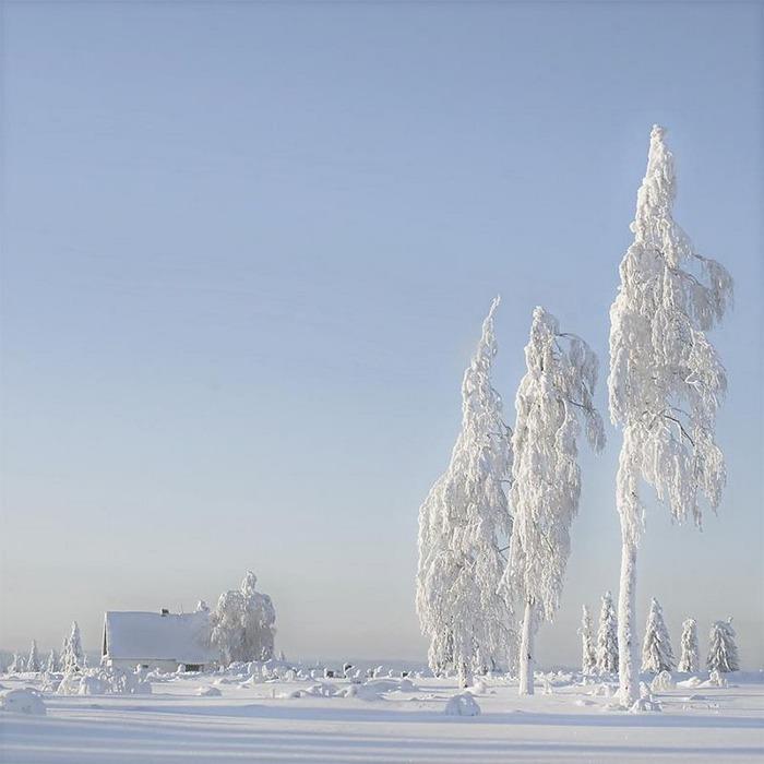 Вот и наступила зима 16