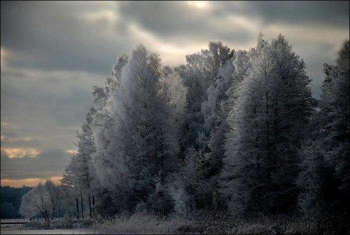 Вот и наступила зима 18