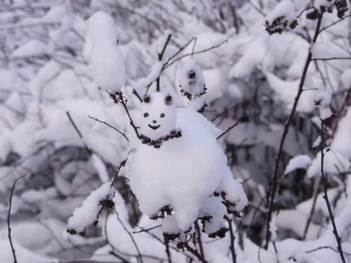 Вот и наступила зима 20