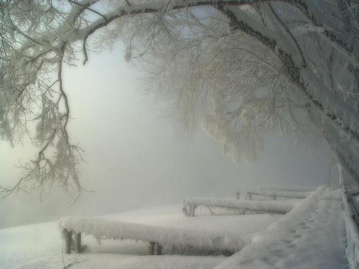 Вот и наступила зима 22