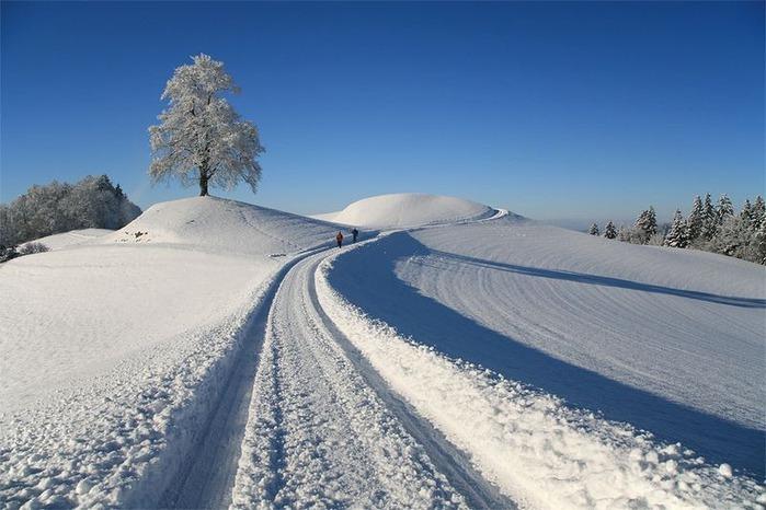 Вот и наступила зима 24