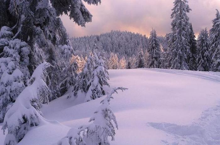 Вот и наступила зима 38