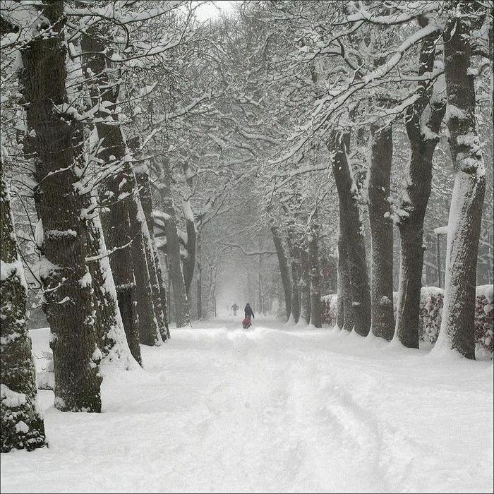 Вот и наступила зима 72
