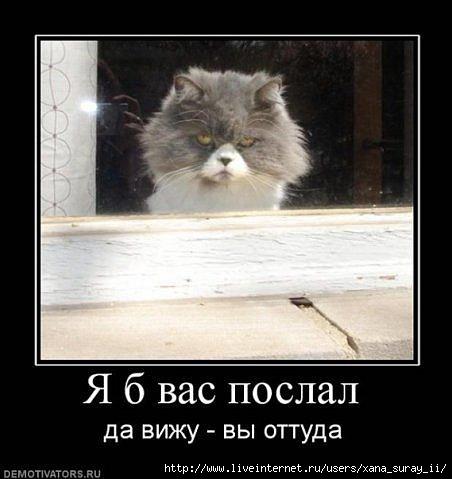 давайте посмеемся 67314018_x_97df8d5b