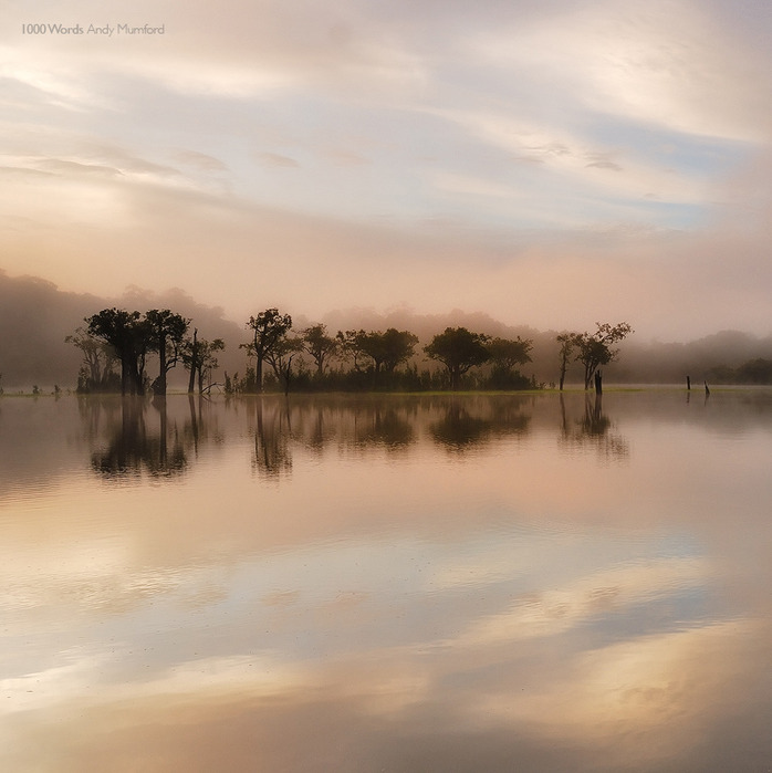 Профессиональные фото природы от Энди Мамфорда (Andy Mumford)