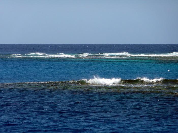 Восьмое чудо света - Большой Барьерный риф Австралии-Great Barrier Reef 15572