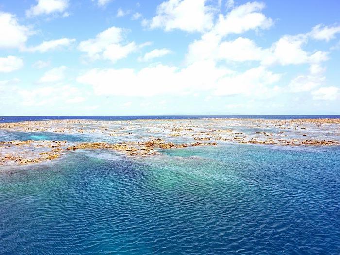 Восьмое чудо света - Большой Барьерный риф Австралии-Great Barrier Reef 67206