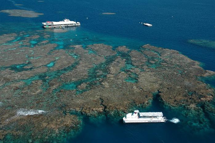 Восьмое чудо света - Большой Барьерный риф Австралии-Great Barrier Reef 58291