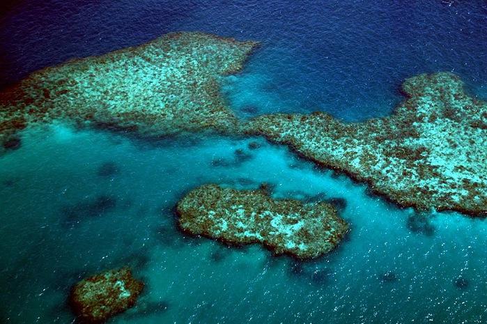 Восьмое чудо света - Большой Барьерный риф Австралии-Great Barrier Reef 46637