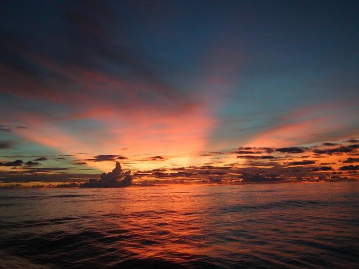Остров Кокос 96928