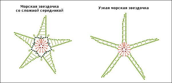 варианты морских звезд,