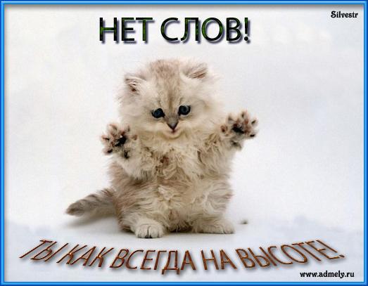 http://img1.liveinternet.ru/images/attach/c/2//68/326/68326310_1293295460_komment.jpg