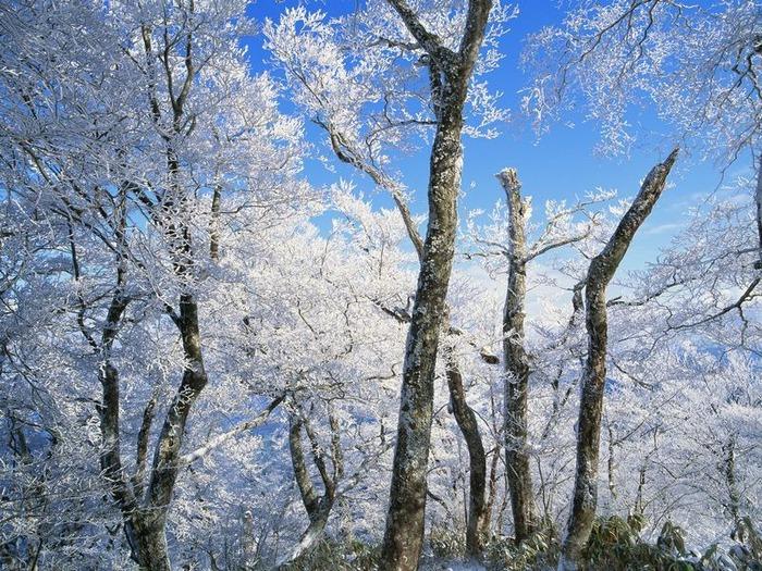 50 великолепных пейзажей Японии 11