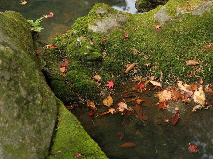 50 великолепных пейзажей Японии 14