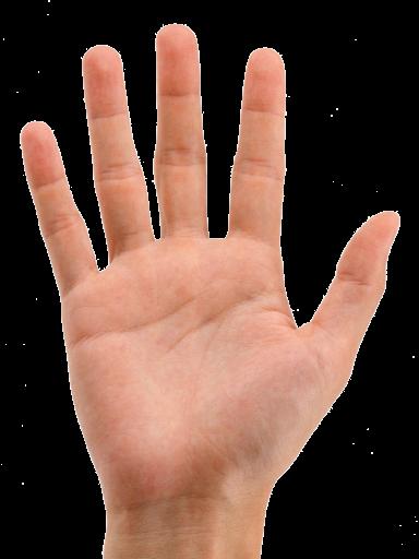 (384x512, 182Kb)