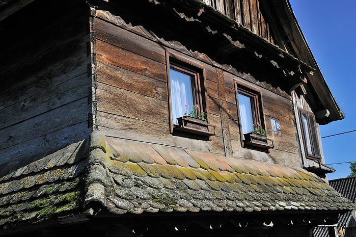 Деревянные дома в заповедном болоте - «Лоньско поле» 94945