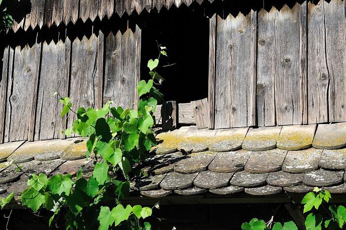 Деревянные дома в заповедном болоте - «Лоньско поле» 93508