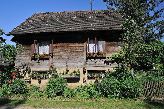 Деревянные дома в заповедном болоте - «Лоньско поле» 12207
