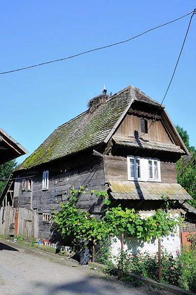 Деревянные дома в заповедном болоте - «Лоньско поле» 64445