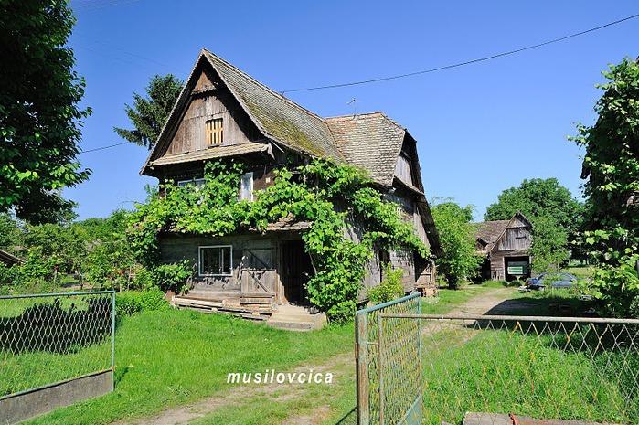 Деревянные дома в заповедном болоте - «Лоньско поле» 69883