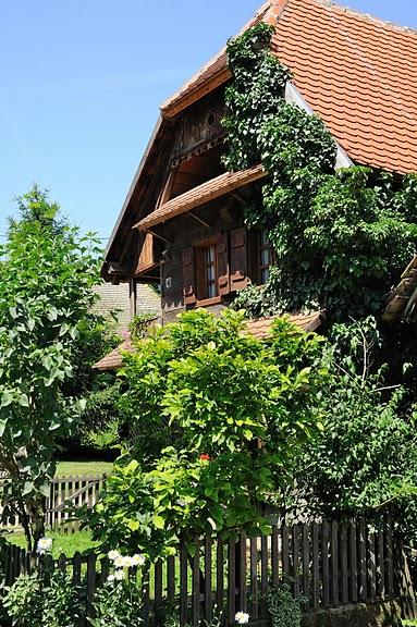 Деревянные дома в заповедном болоте - «Лоньско поле» 99237