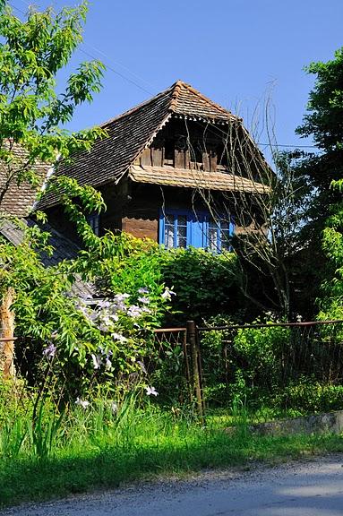 Деревянные дома в заповедном болоте - «Лоньско поле» 42913