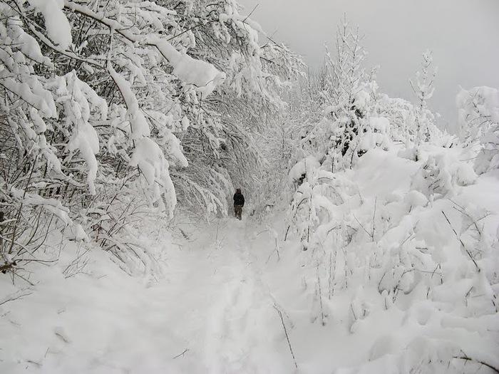 Плитвицкие озёра зимой - Зимняя сказка. 80877
